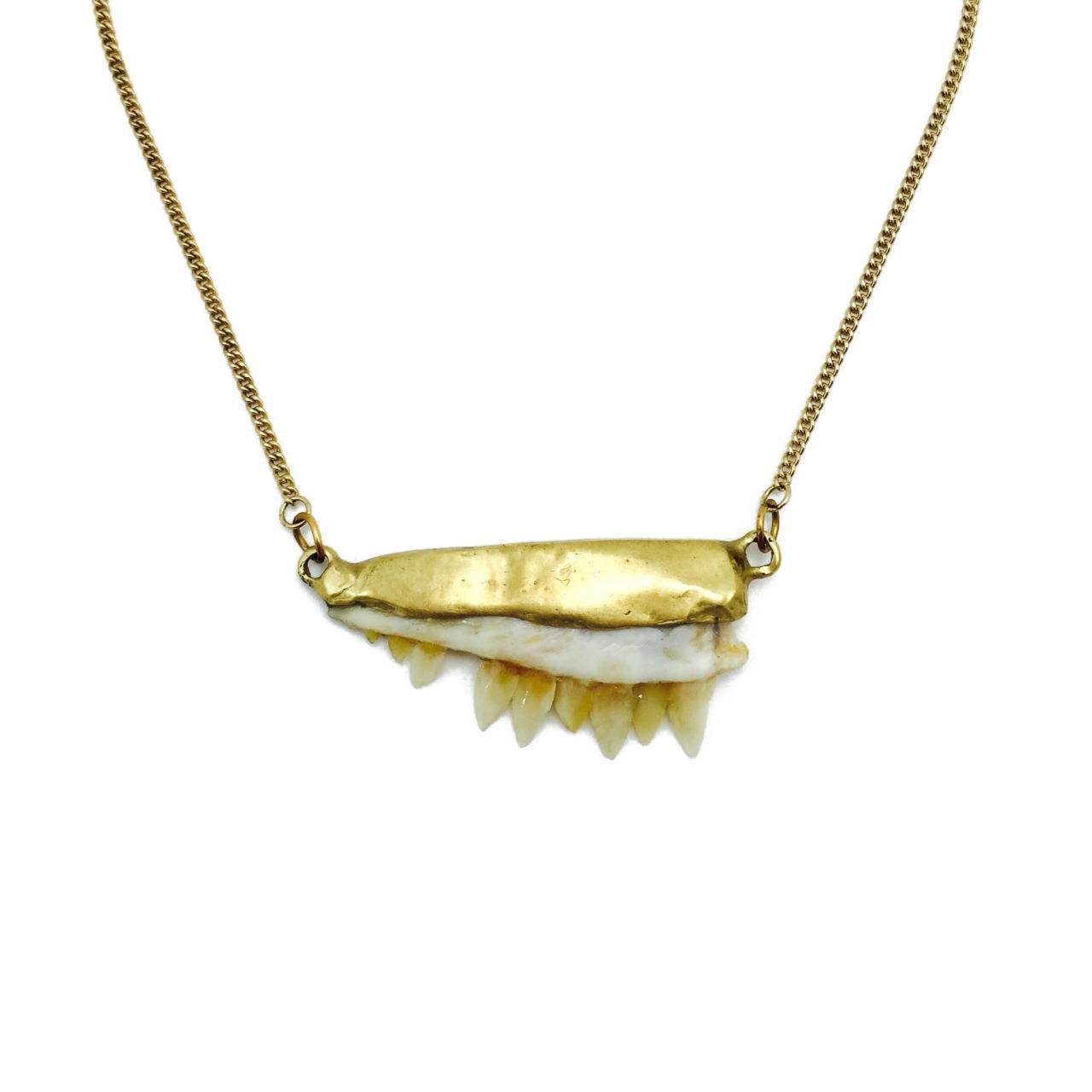 barracuda-jaw-necklace
